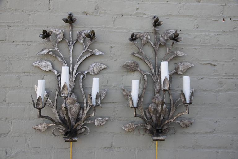 Pair of Three-Light Silvered Sconces