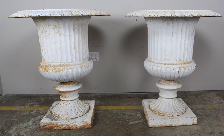 Monumental Painted Cast Iron Planters, Pair