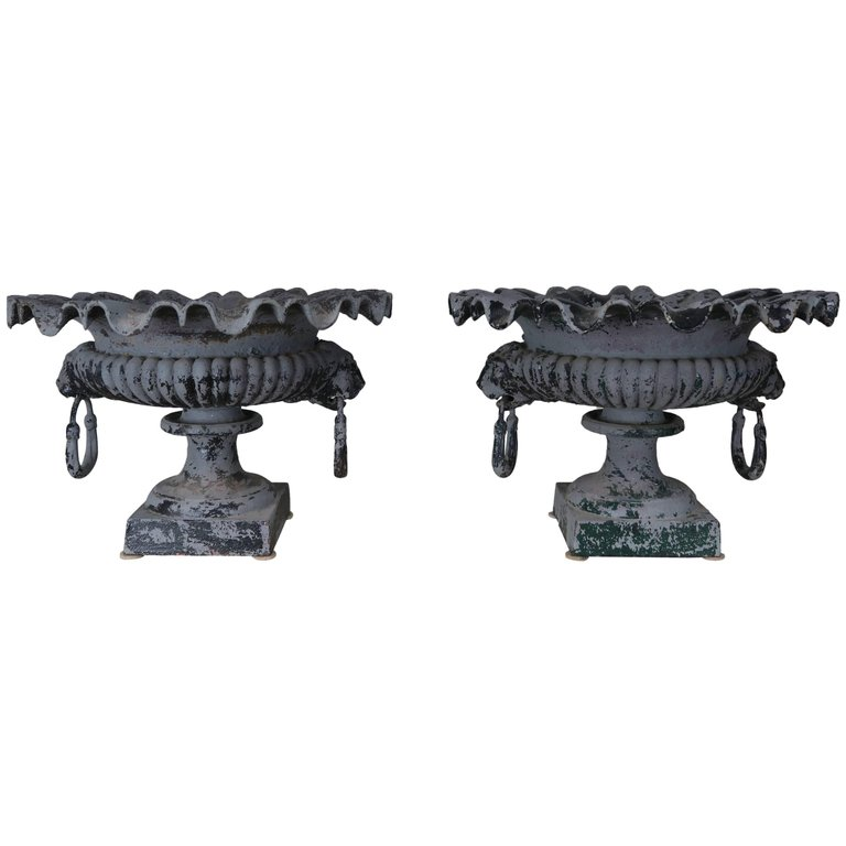 Charmant Pair Of 19th Century French Cast Iron Garden Urns