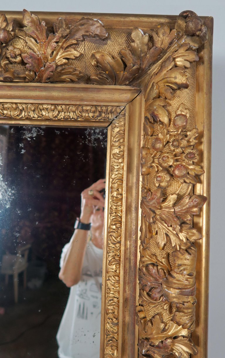 18th Century French Carved Louis XIV Style Mirror6