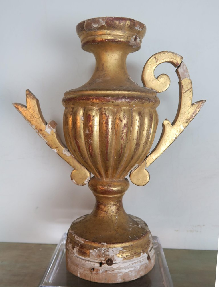 Pair of 19th Century Italian Giltwood Urn Fragments on Lucite Bases5